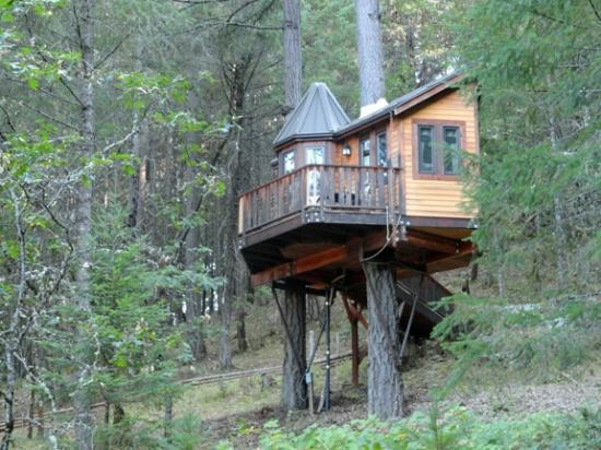 Cave Junction, Oregón: The Calypso Tree House
