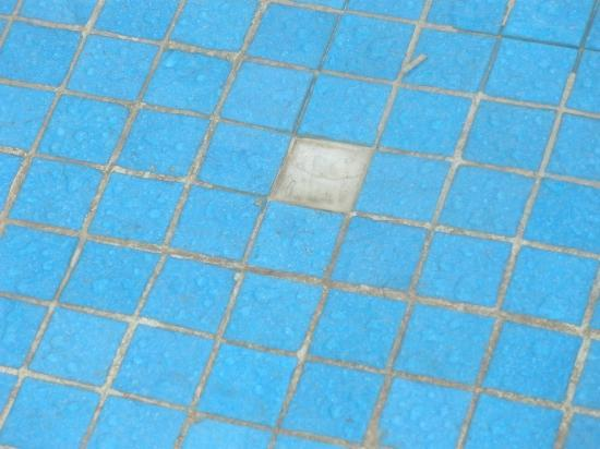 Missing tiles in pool and dirty grout lines - Picture of ...