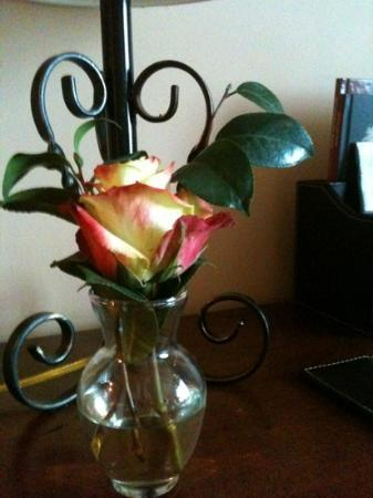 Hotel Granduca Houston: beautiful rose in each bedroom