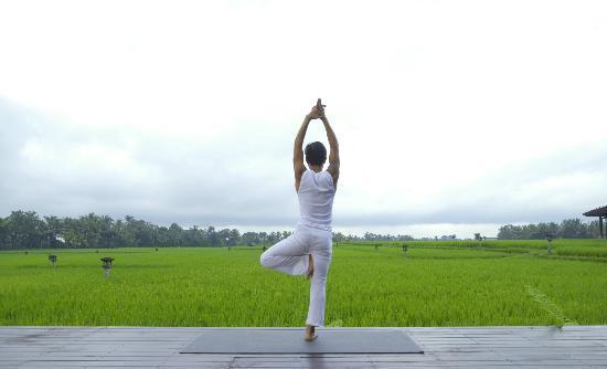 The Chedi Club Tanah Gajah, Ubud, Bali – a GHM hotel: View from Yoga Studio