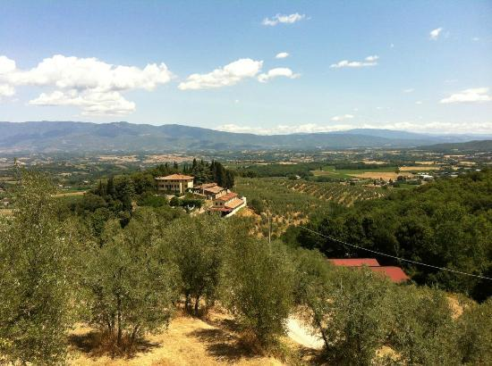 Petrolo: main villa – view from villa costa 
