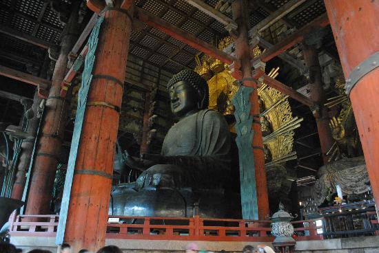วัดโทไดจิ: buddha