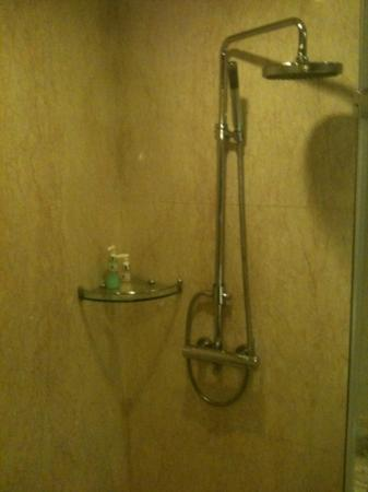 Royal Palace Hotel: overhead and hand held showers