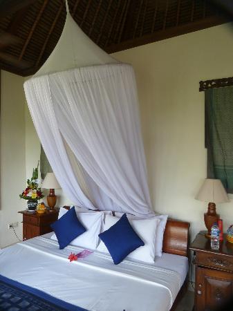 Alam Indah: Mosquito net