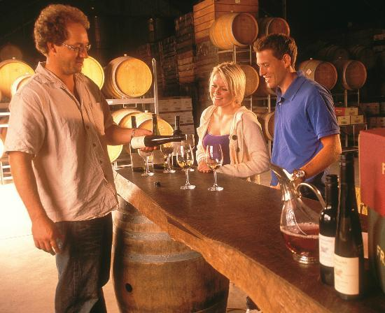Taste The South Wine Tours: Barrel Room tasting
