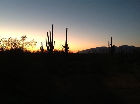 mitten im Naturpark liegt die Tanque Verde Ranch