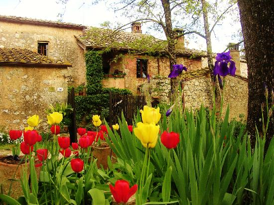 Photo of Agriturismo La Gavina Monteriggioni