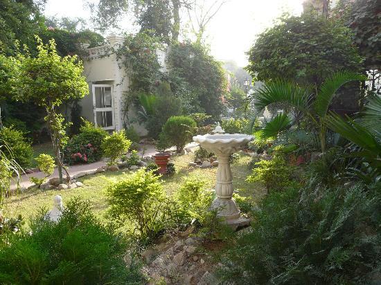 Sugan Niwas Palace: The garden