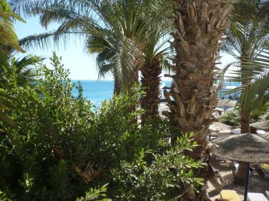Al Mashrabiya : Наш номер - 1я полоса у пляжа