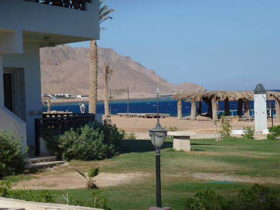 Sea Sun Hotel Dahab : stuning from the room