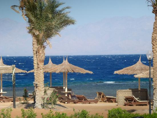 Sea Sun Hotel Dahab : beach and sea