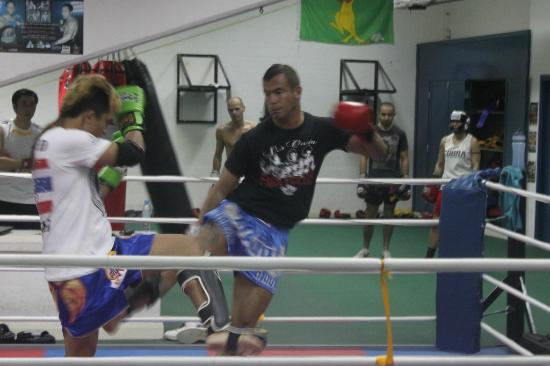 Cobra Fitness Abu Dhabi: Muay Thai sparring wit a trainer from thailand in cobra-gym