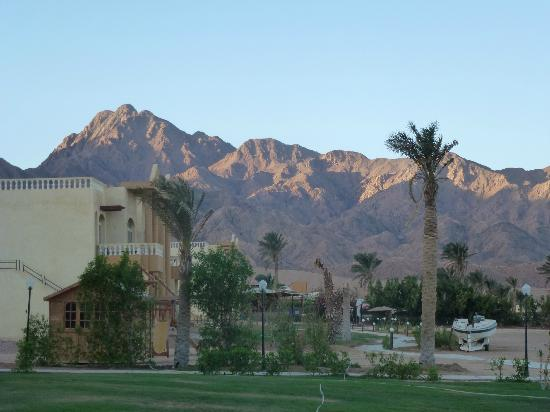 Sea Sun Hotel Dahab : beautiful breathtaking views from your own room