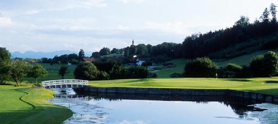 Golf Club Hoslwang im Chiemgau e. V.: Grün von Loch 5