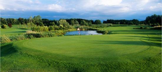Golf Club Hoslwang im Chiemgau e. V.: Grün von Loch 17