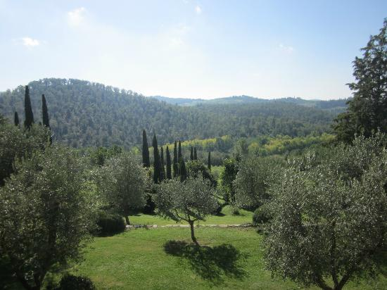 Castello di Spaltenna Exclusive Tuscan Resort & Spa: View from room