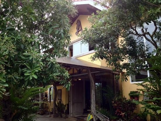Amarela Resort, Bohol, PH- Great little hotel with fantastic staff and friendly geckos!