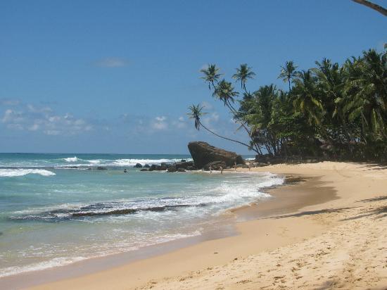 Sri Gemunu Beach Resort: Beach looking towards hotel