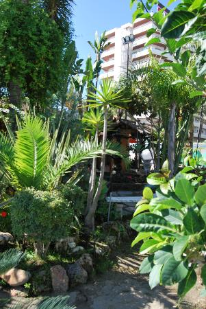 """Bajondillo Apartments : Jardines del """"chiringuito"""" de la playa."""