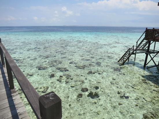 Pom Pom Island Resort & Spa: Clear waters