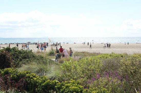Coronado Island: beach