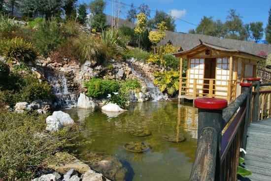 Tarifa y horario picture of jardin botanico molino de for Bodas jardin botanico malaga