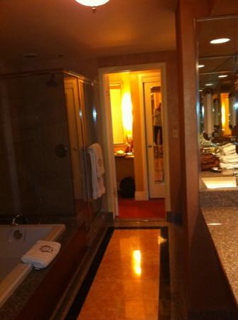The Brown Palace Hotel and Spa, Autograph Collection: bathroom in room 918. top of the brown suite