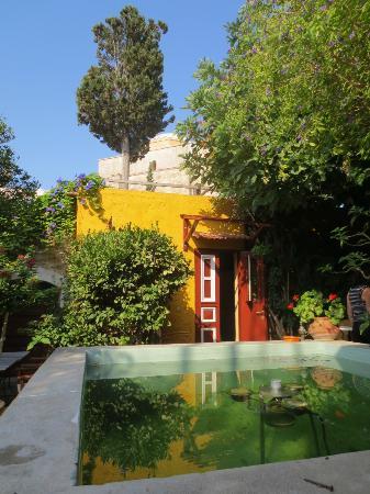 Marco Polo Mansion: Backyard