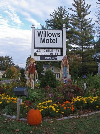 Willows Motel :                                     Autumn Decorations