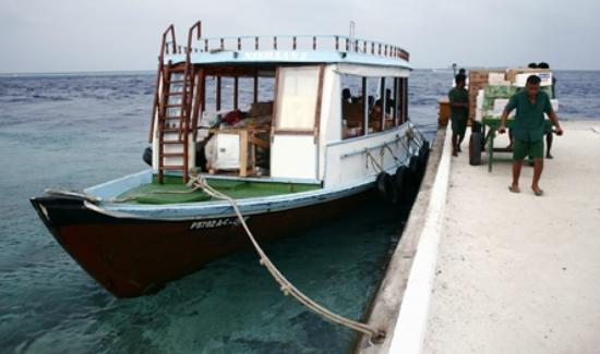 Biyadhoo Island Resort: Boot