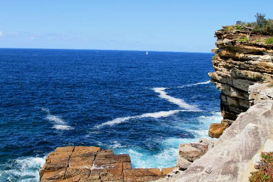 Real Sydney Tours: Pacific Ocean