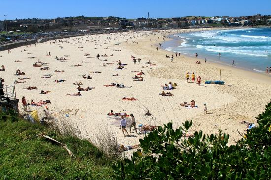 Real Sydney Tours: Bondi Beach
