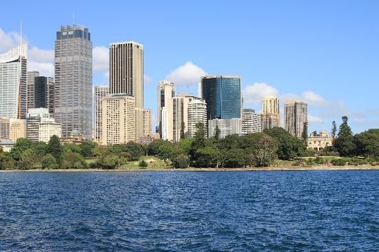 Real Sydney Tours: City Views