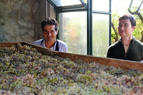 Wine Tours with Italy and Wine: Tuscan wine tour