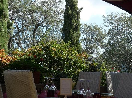 Le Micocoulier : Vue de la terrasse