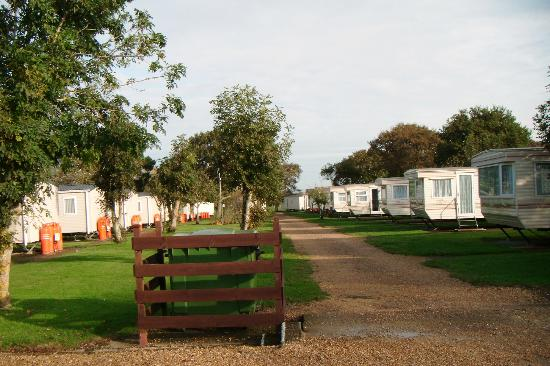 The Orchards Holiday Caravan and Camping Park: Other caravans in area