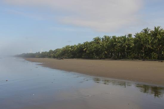 Hotel Playa Bejuco: strand