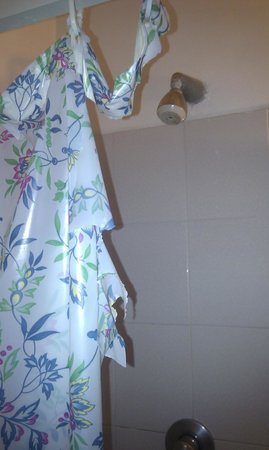 Settimo Cielo: Shower curtain ripped
