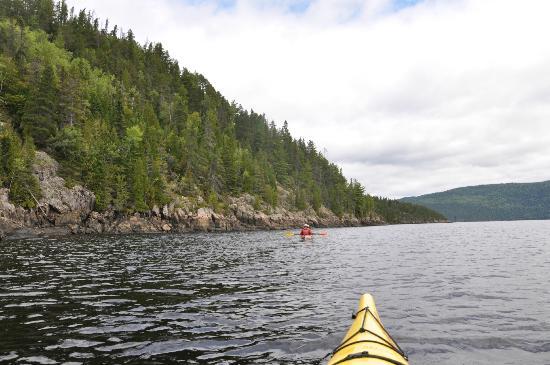 Découverte du fjord en kayak