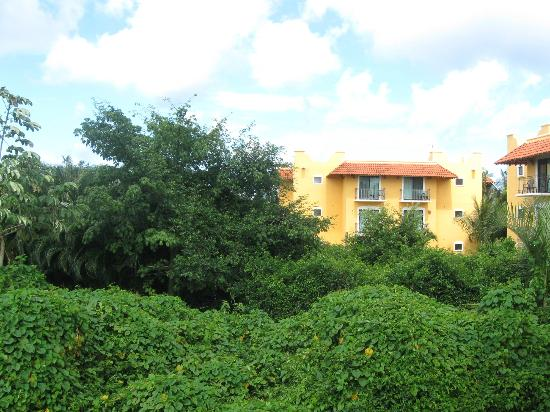 Occidental Cozumel: View from balcony and other building