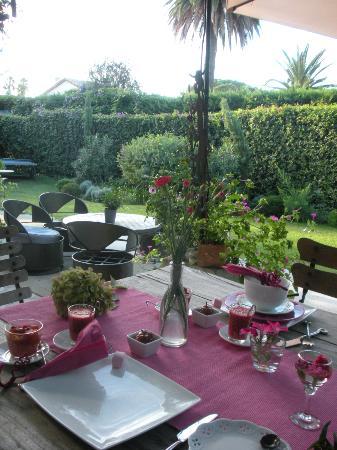 La Maison du Tamisier : Garden view
