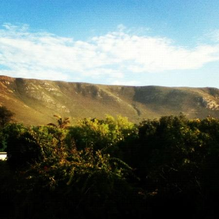Hermanus Backpackers: The amazing view from the Backpackers Pool