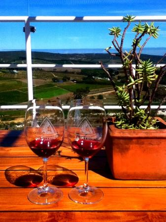 Hermanus Backpackers: Wine tasting view