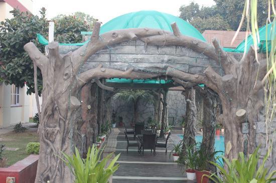Hotel Yamuna View : pool entrance