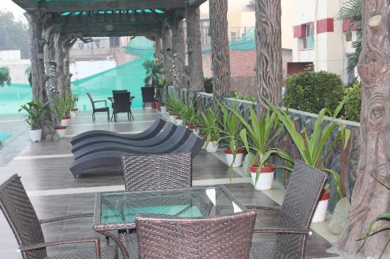 Hotel Yamuna View : pool