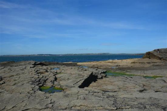Marsh Mere Lodge: View at Hook Head