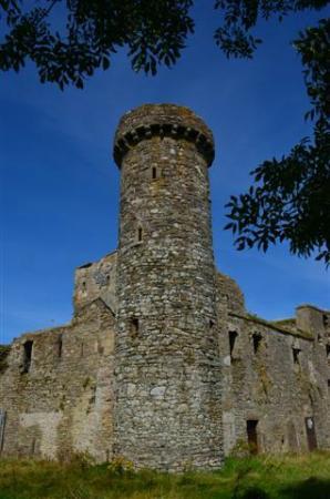 Marsh Mere Lodge: Fethard Castle