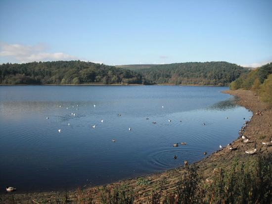 Ogden Water Country Park & Nature Reserve: views of Ogden Water