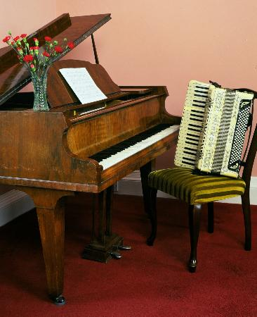 Ballon, Ireland: Drawing Room Piano