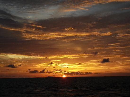 Ellaidhoo Maldives by Cinnamon: The Sun sets are out of this world.
